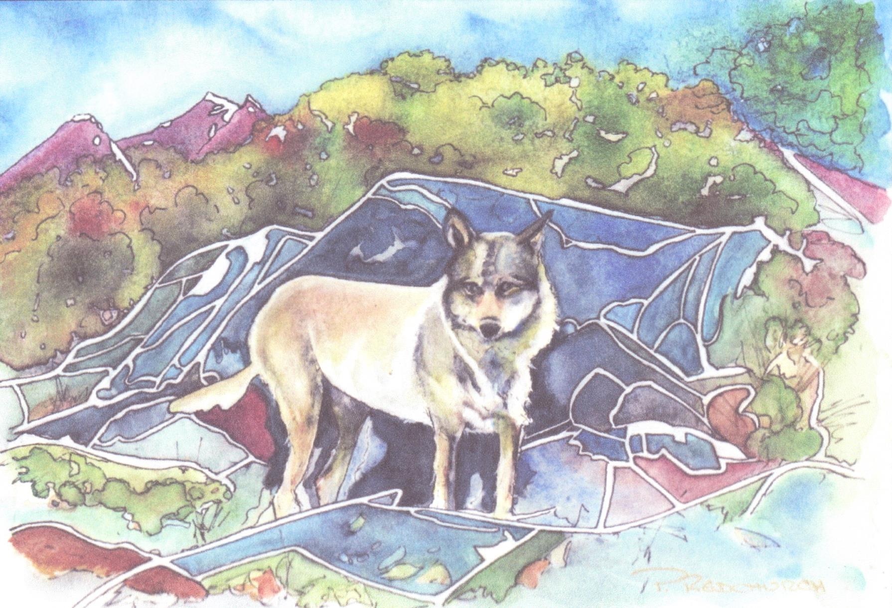 Staqeya - The Wolf of Discovery Island
