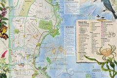 Oak-Bay-community-green-map-FINAL-web