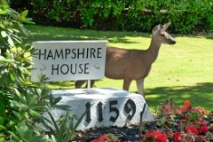 Deer at front - Hampshire House